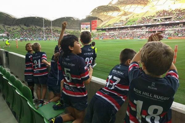 Box_Hill_Rugby_Club_Juniors_at_Aami_Park.jpg